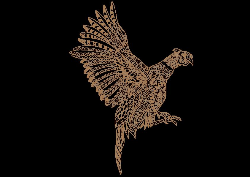 bażant nasz symbol